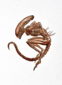 Illustration du film Alien 3 de David Fincher par Alexandre Metzger