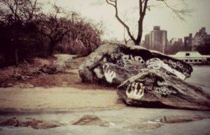 Vue de New York Central Park en friche années 1980